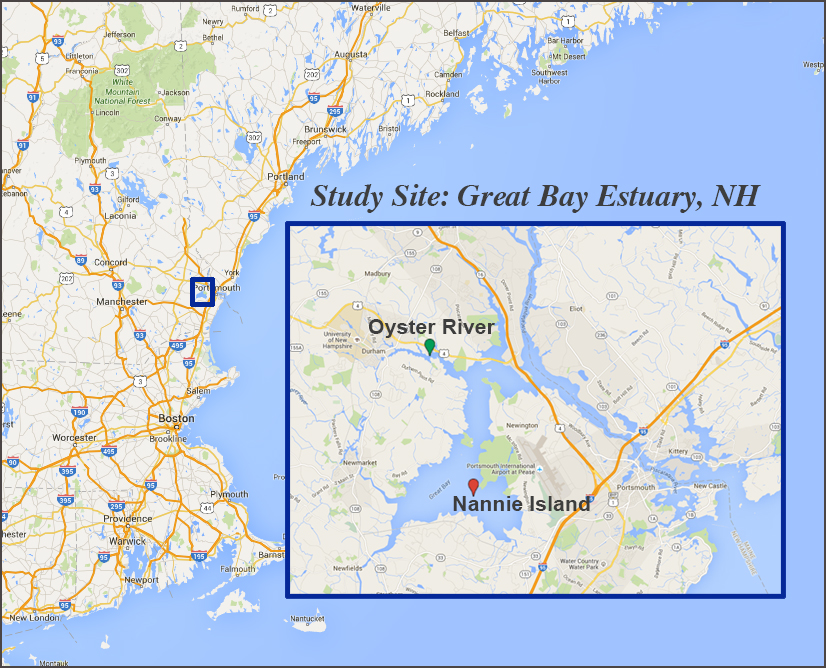 Great_Bay_Study_Site_sm.